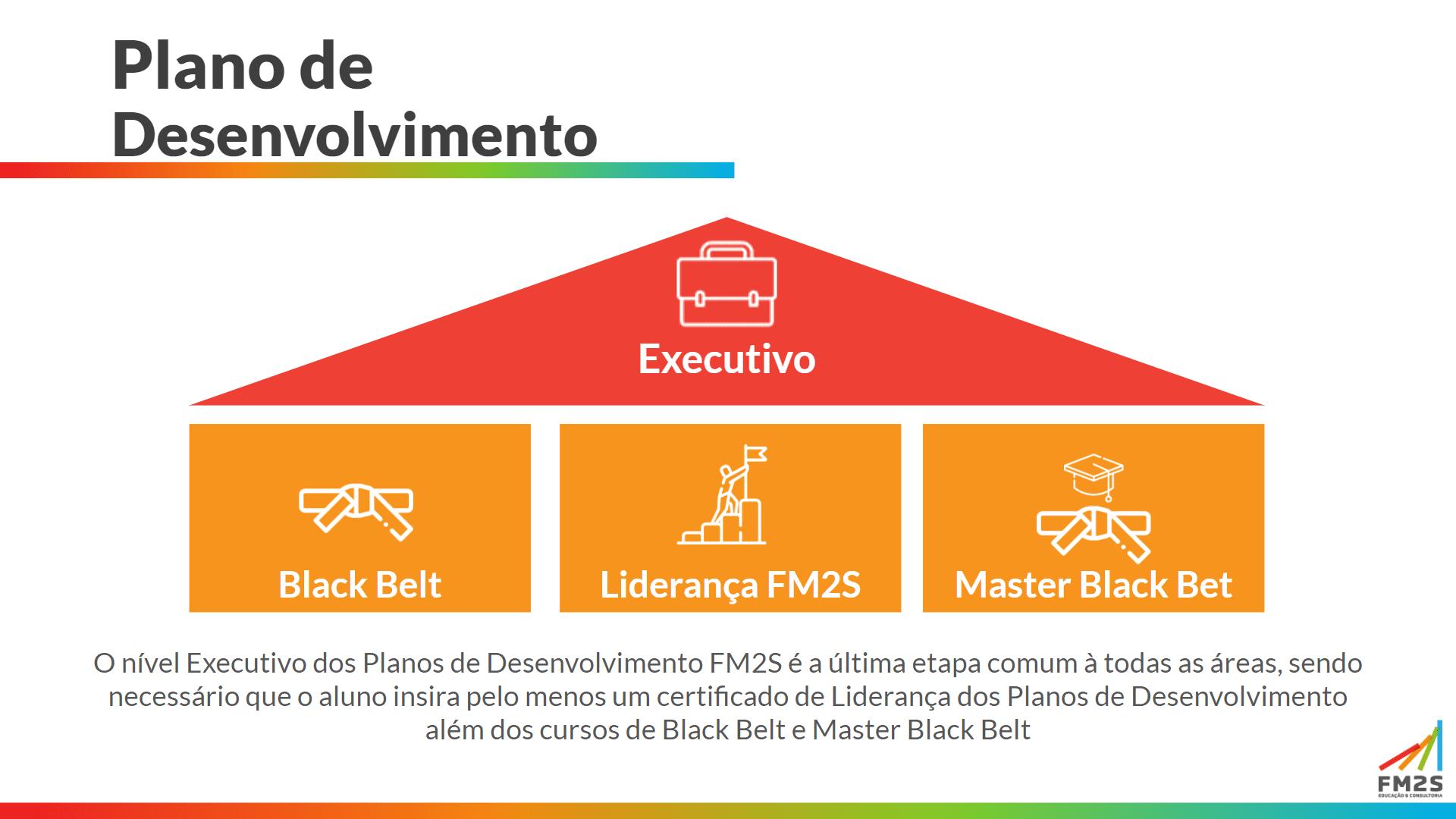 Plano de Desenvolvimento FM2S-min